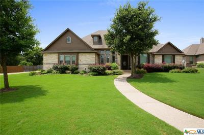 Belton Single Family Home For Sale: 691 Eagle Landing Drive