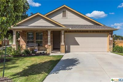 Belton Single Family Home For Sale: 4501 Benvilio Drive