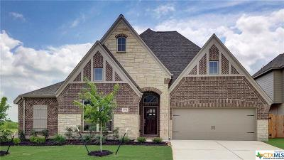 Seguin Single Family Home For Sale: 2981 High Meadow Street