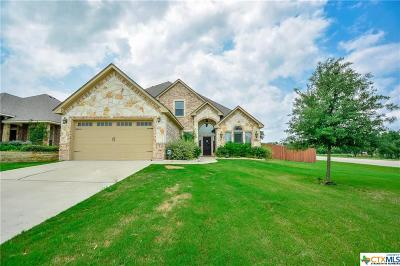 Belton Single Family Home For Sale: 3321 Ten Bits Drive