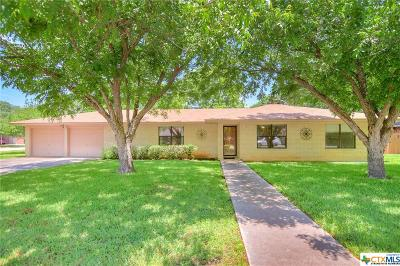 New Braunfels Single Family Home For Sale: 168 Bess Street