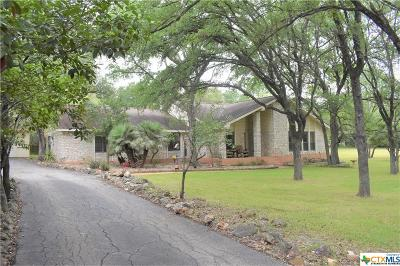Single Family Home For Sale: 209 Sinuso Drive