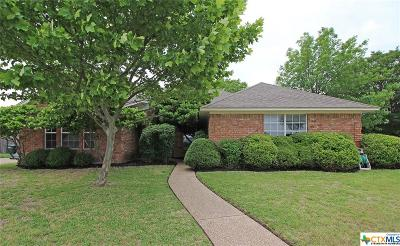 Copperas Cove Single Family Home For Sale: 513 Skyline Drive