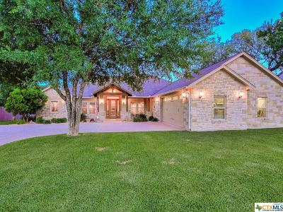 Burnet County Single Family Home For Sale: 311 Yellow Ribbon Trail