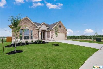 Cibolo Single Family Home For Sale: 718 Silver Fox