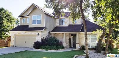 Belton TX Single Family Home For Sale: $299,000
