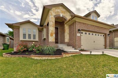 Hutto Single Family Home For Sale: 178 Mount Ellen Street
