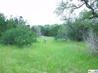 San Marcos Residential Lots & Land For Sale: 311 Rancho Encino Drive