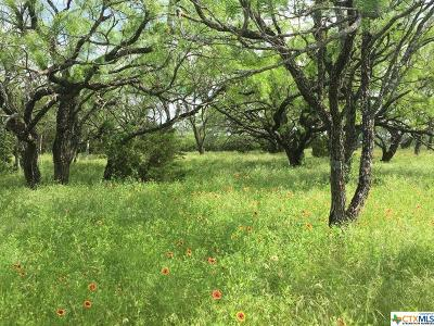 Lampasas County Residential Lots & Land For Sale: Tbd N Cr 3800