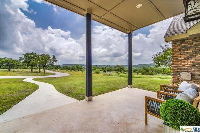 Comal County Single Family Home For Sale: 195 Coyote Vista