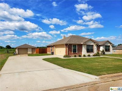 Gatesville Single Family Home For Sale: 319 Valley View Drive