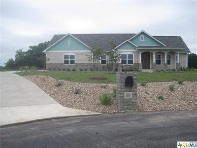 Georgetown Single Family Home For Sale: 306 Highlander Court
