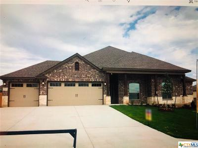 Belton TX Single Family Home For Sale: $261,722