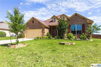 Harker Heights, Nolanville Single Family Home For Sale: 3916 Hickory View