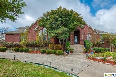 San Antonio Single Family Home For Sale: 22019 Roan Bluff Drive