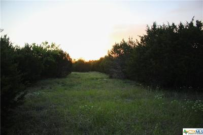 Bell County, Burnet County, Coryell County, Lampasas County, Mills County, Williamson County, San Saba County, Llano County Residential Lots & Land For Sale: Tbd - 1 County Rd 146