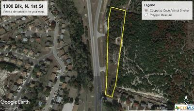 Copperas Cove Commercial For Sale: 1000 Blk N 1st Street