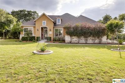 New Braunfels TX Single Family Home For Sale: $399,900