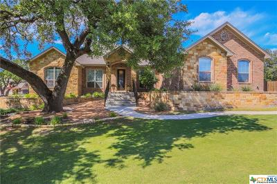 Belton Single Family Home For Sale: 478 Archstone Loop