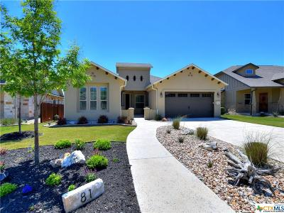 Georgetown Single Family Home For Sale: 81 Santa Maria Street