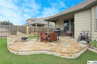 Round Rock Single Family Home For Sale: 3541 Guadalajara Street