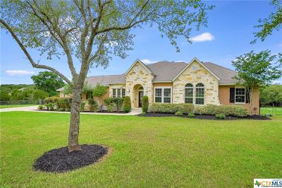 New Braunfels Single Family Home For Sale: 514 Panarama Place