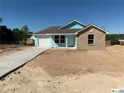 Canyon Lake Single Family Home For Sale: 1347 Rhinestone