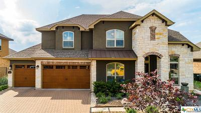 San Marcos TX Single Family Home For Sale: $584,900