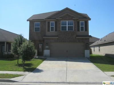 Kyle TX Single Family Home For Sale: $218,000