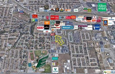 Commercial For Sale: 2608 Trimmier Road