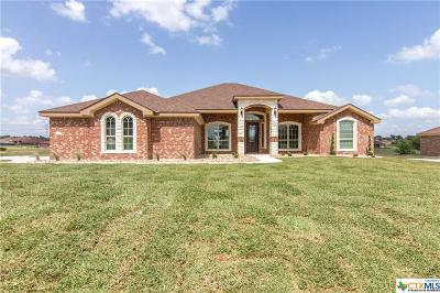 Kempner Single Family Home For Sale: 921 Cr 4772