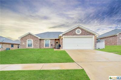 Killeen Single Family Home For Sale: 1311 Trail Boss Drive