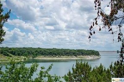 Belton Single Family Home For Sale: 88 (401) Arrowhead Point Road