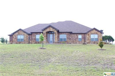 Killeen TX Single Family Home For Sale: $400,000