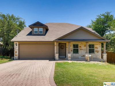San Marcos TX Single Family Home For Sale: $315,000