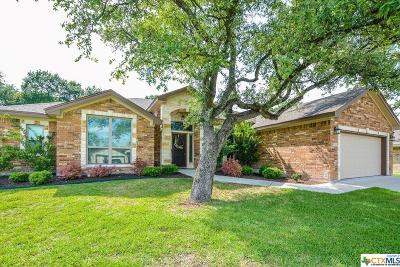 Belton Single Family Home For Sale: 3213 Purple Sage Drive