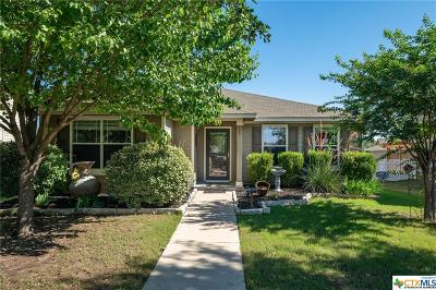 Round Rock Single Family Home For Sale: 612 Gabriel Mills Drive
