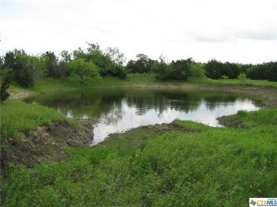 Lampasas Residential Lots & Land For Sale: 13 County Road 3900