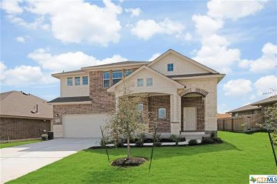 Hutto Single Family Home For Sale: 516 Tanda Lane