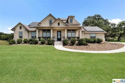Comal County Single Family Home For Sale: 260 Mystic Shores Boulevard