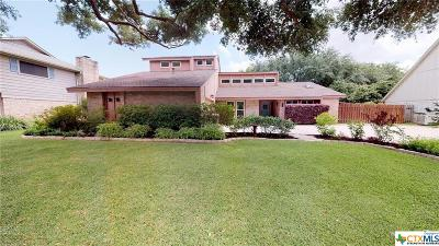 Single Family Home For Sale: 503 Turtle Rock Drive