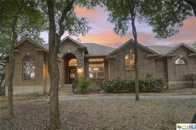 New Braunfels Single Family Home For Sale: 468 Shady Hollow
