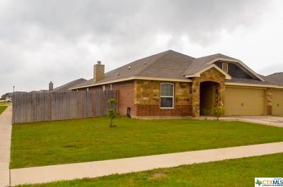 Killeen Single Family Home For Sale: 2502 Hector Drive