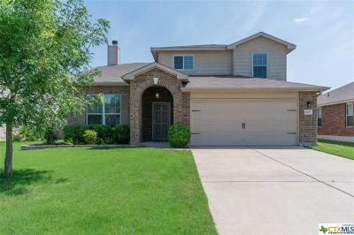 Temple, Belton Single Family Home For Sale: 10005 Sunny Side Lane