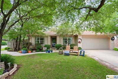 Leander Single Family Home For Sale: 3401 Merlot Cove