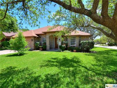 Cedar Park Single Family Home For Sale: 1606 Amelia Drive