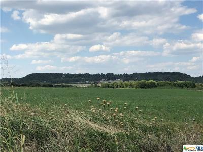 Bell County, Burnet County, Coryell County, Lampasas County, Mills County, Williamson County, San Saba County, Llano County Residential Lots & Land For Sale: Tbd-2 Hwy 36