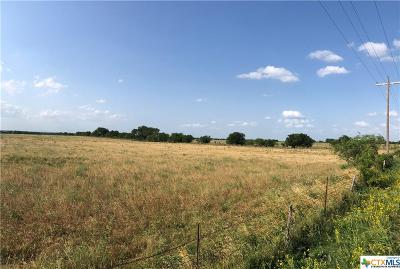 Salado Residential Lots & Land For Sale: 1432 Dos Hermanas Road