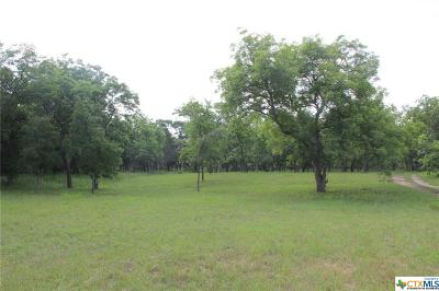 Liberty Hill Residential Lots & Land For Sale: 716 Buffalo Trail