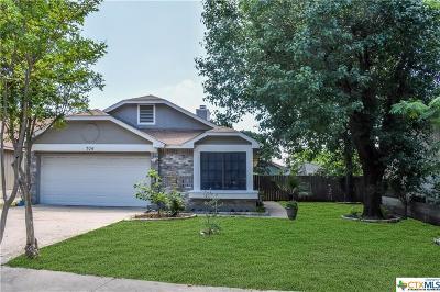 Cedar Park Single Family Home For Sale: 706 Pecan Ranch